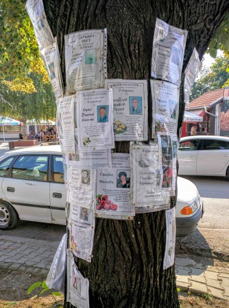 A tree trunk used as a obituary notice board